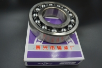 Double row aligning ball bearing 1310