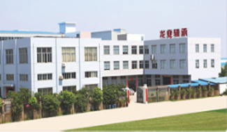 TAIZHOU LONGYE BEARING CO.,LTD (RSK BEARING)